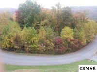 Home for sale: 946 St. Of Dreams, Gatlinburg, TN 37738