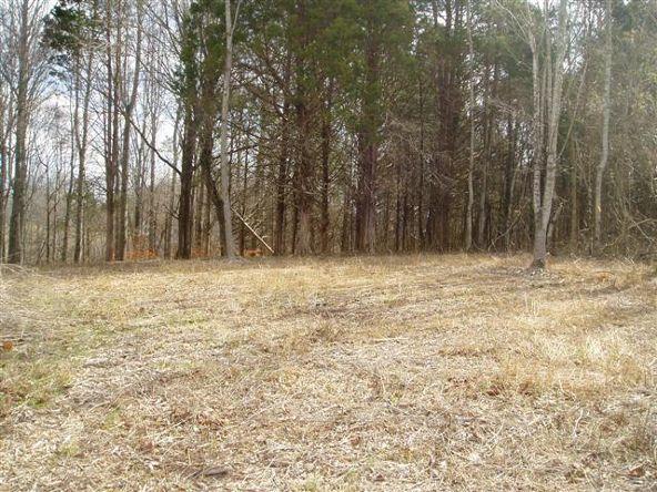 0 Cline Ridge Rd., Winchester, TN 37398 Photo 1