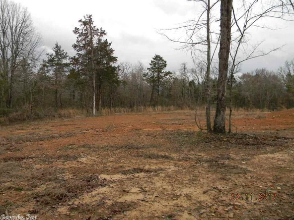 399 Loveland, Atkins, AR 72823 Photo 80