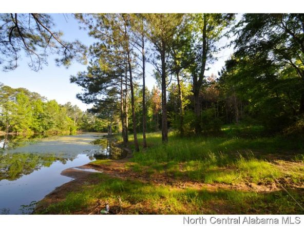 911 Co Rd. 1169, Cullman, AL 35057 Photo 8
