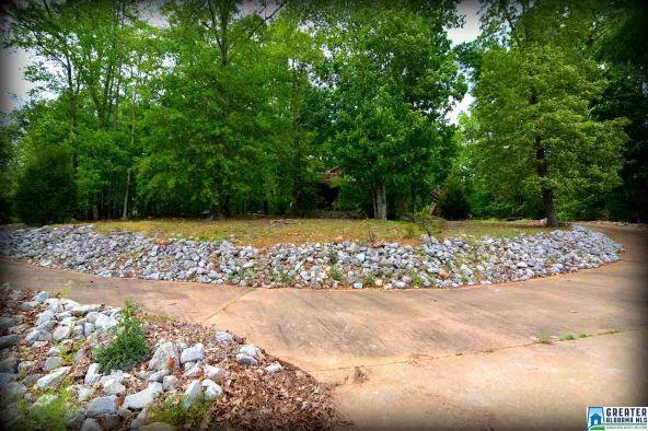 870 Black Acres Rd., Cropwell, AL 35054 Photo 40