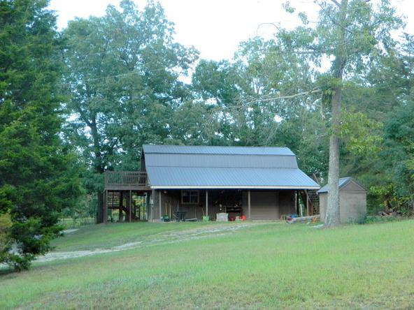 526 County Rd. 139, Bryant, AL 35958 Photo 139