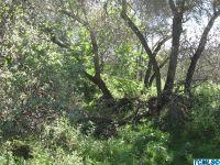 Home for sale: 0 Redbud Trail, Three Rivers, CA 93271