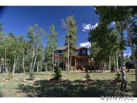 Home for sale: 45 Whimbrel Ct., Como, CO 80440