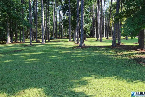 337 Rabbit Point Rd., Cropwell, AL 35054 Photo 2