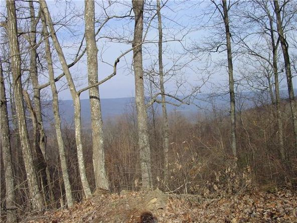1 Jackson Point Rd., Sewanee, TN 37375 Photo 2