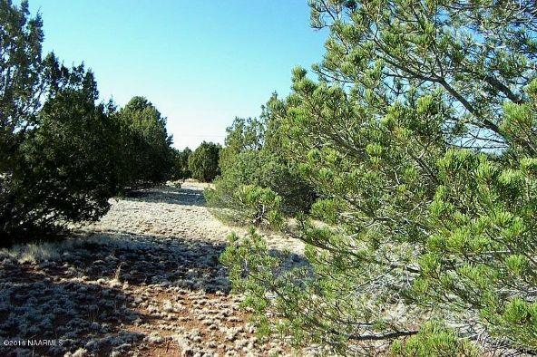 7217 N. Audrey Way, Williams, AZ 86046 Photo 13