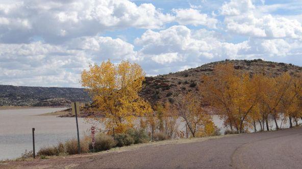 109 River Springs Ranch Unit 3 --, Saint Johns, AZ 85936 Photo 65