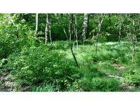 Home for sale: Lot 28 Hopyard Rd., East Haddam, CT 06423