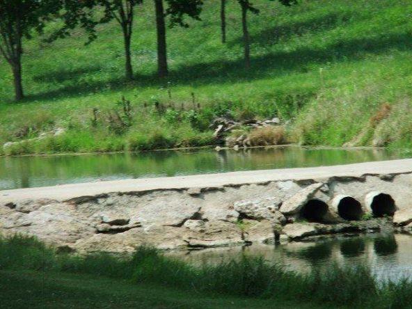 61 Serenity Ct., Cynthiana, KY 41031 Photo 19