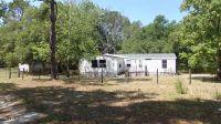 Home for sale: 1350 S.E. 185, Williston, FL 32696