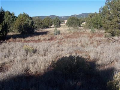1357 W. Pinto Dr., Ash Fork, AZ 86320 Photo 9