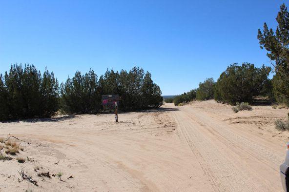7209 N. Hwy. 191 --, Sanders, AZ 86512 Photo 15