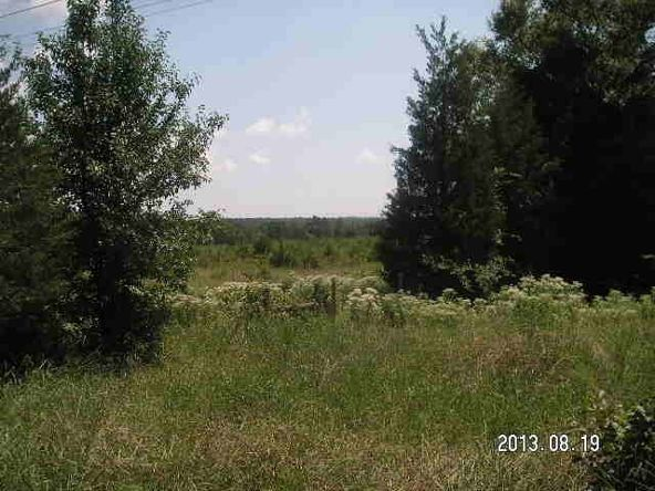 40 Acres M/L, Clarksville, AR 72830 Photo 9