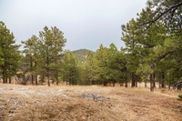 Home for sale: 208 Alpine Way, Boulder, CO 80304