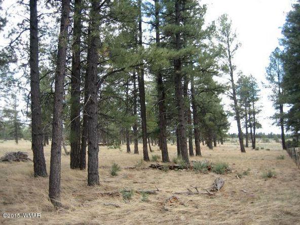 152 Sponsellor Siding, Lakeside, AZ 85929 Photo 12
