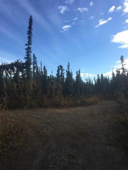 2295 Maria St., Fairbanks, AK 99709 Photo 10