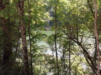 Home for sale: Webbs Camp Rd., Walling, TN 38579