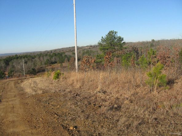 Hwy. 92, 3 Acre Tracts, Springfield, AR 72157 Photo 3