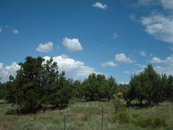 7248 N. Apache Avenue, Williams, AZ 86046 Photo 1