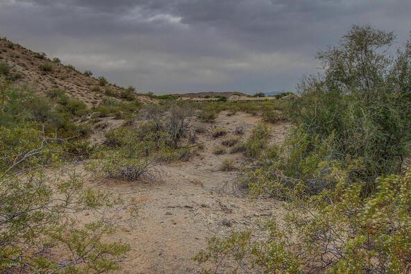 14228 S. Canyon Dr., Phoenix, AZ 85048 Photo 12