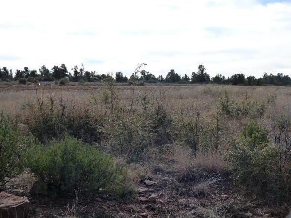 Tbd N. Mclane Rd., Payson, AZ 85541 Photo 19