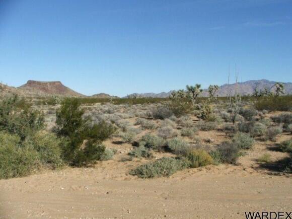 3529-C Arroyo Rd., Yucca, AZ 86438 Photo 4