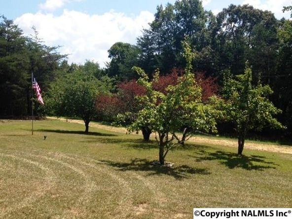 158 County Rd. 944, Mentone, AL 35984 Photo 29