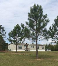 Home for sale: 227 Jasper Colson Rd., Hazlehurst, GA 31539