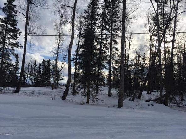 10004 W. Clay-Chapman Rd., Wasilla, AK 99623 Photo 12