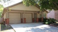 Home for sale: 13818 Chevy Oak, San Antonio, TX 78247