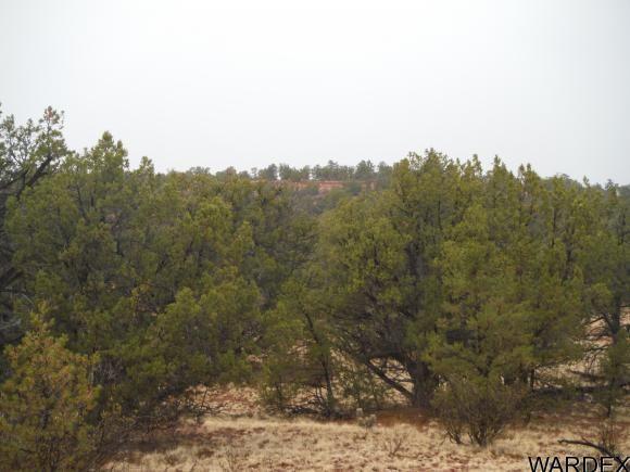2462 Presidio Ln., Seligman, AZ 86337 Photo 13