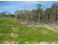 Home for sale: Hwy. 98 E. 52 Acres, Lucedale, MS 39452