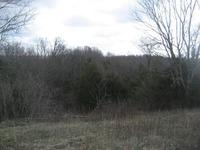 Home for sale: 7890 New Liberty, Lawrenceburg, KY 40342