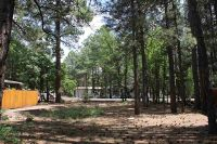 Home for sale: 4156 W. Blue Ridge Loop, Pinetop, AZ 85935