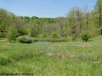 Home for sale: 112 Ac White Oak Run Rd., Buckhannon, WV 26201