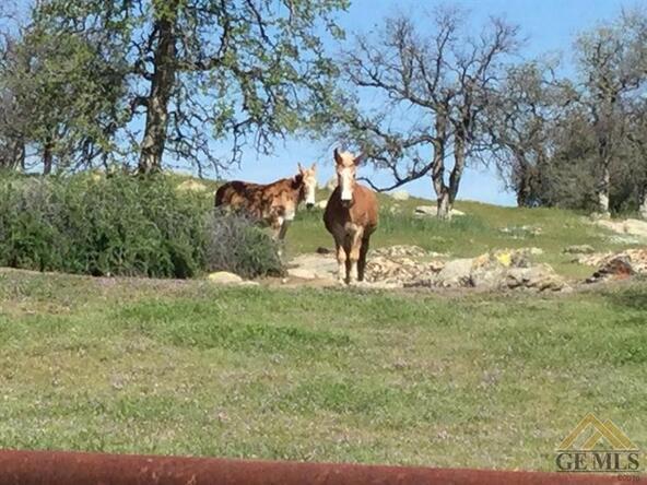 1163 Stockton Dr., Bakersfield, CA 93308 Photo 40