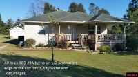 Home for sale: 114 Burris Ln., Flippin, AR 72634