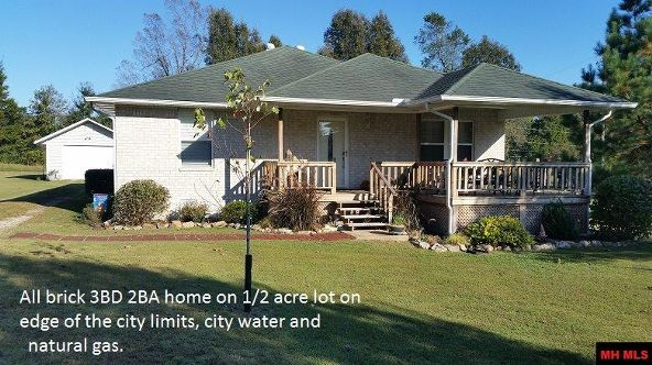 114 Burris Ln., Flippin, AR 72634 Photo 1