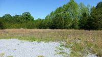 Home for sale: 501 Fannin Industrial Park, Blue Ridge, GA 30513