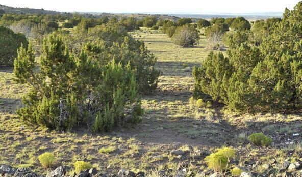 199.54 Acres, Concho, AZ 85924 Photo 14
