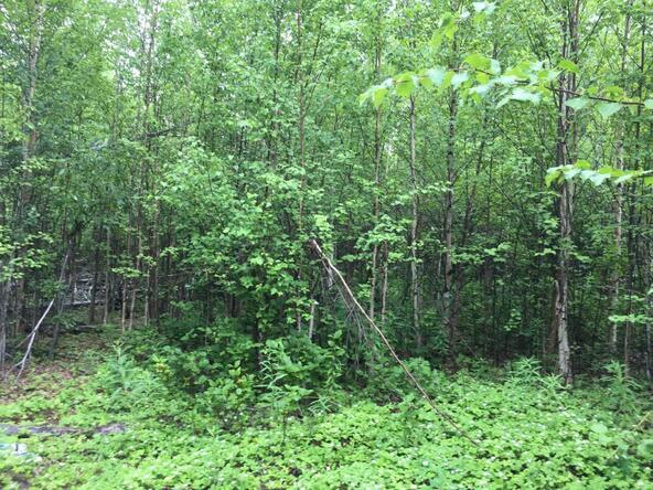 15261 W. Crest Dr., Big Lake, AK 99652 Photo 5