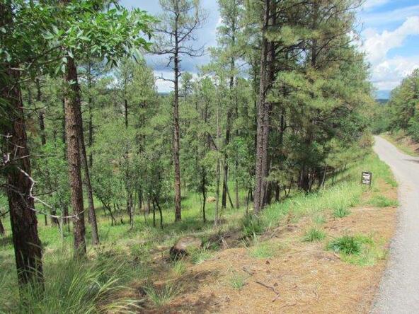 119 del Monte Dr., Alto, NM 88312 Photo 6