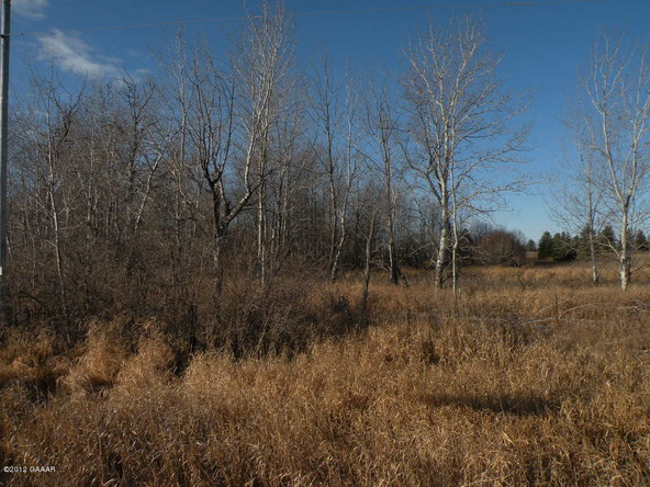 County Rd. 138, Parkers Prairie, MN 56361 Photo 18
