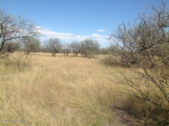 16005 W. Ranger Rd., Arivaca, AZ 85601 Photo 11