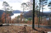 Home for sale: Lot 3 Hickory Knoll, Whitesburg, TN 37891