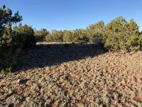 Home for sale: Unit 1 Show Low Pines Lot 388, Concho, AZ 85924