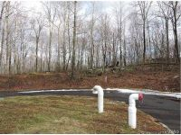 Home for sale: 138 Quanopaug Trail, Woodbury, CT 06798