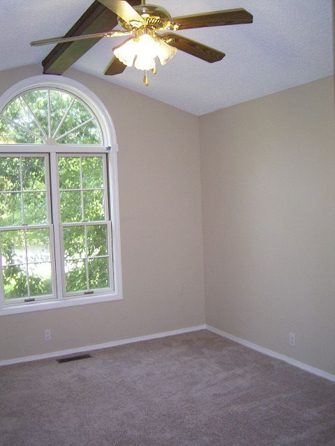 3 Rodriguez Trace, Hot Springs Village, AR 71909 Photo 17