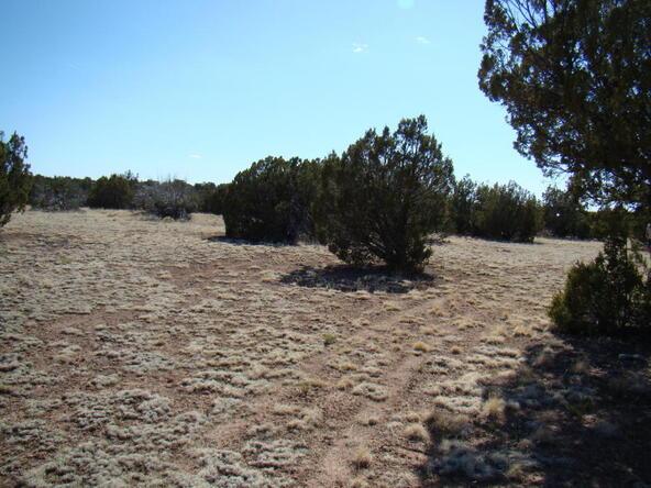 2319 Sitgreaves St., White Mountain Lake, AZ 85912 Photo 15